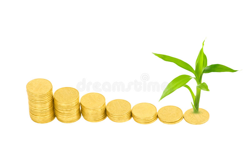 Download Gold coins and plant stock image. Image of gold, cash - 26609907