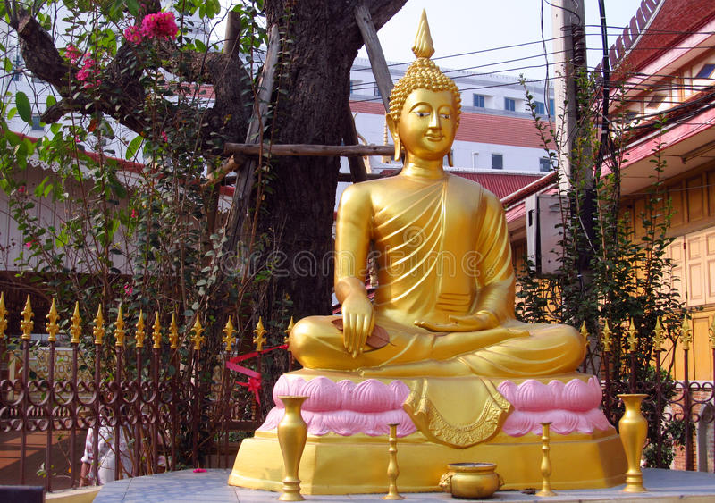 Gold colour Buddha statue in Buddhist temple. Statue of seated Buddhas coloured like gold. Buddha statue in a Buddhist temple. Sacred relic of Buddhism royalty free stock image