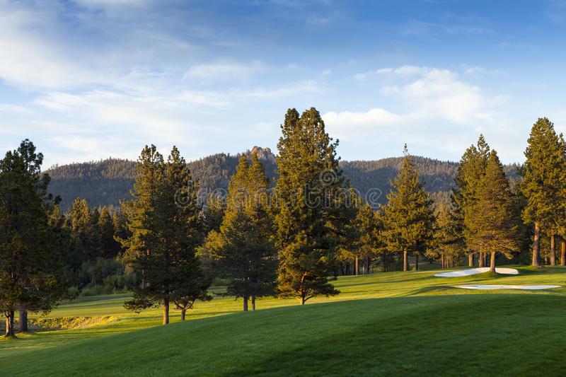 Gold Course near Lake Tahoe, Nevada royalty free stock images