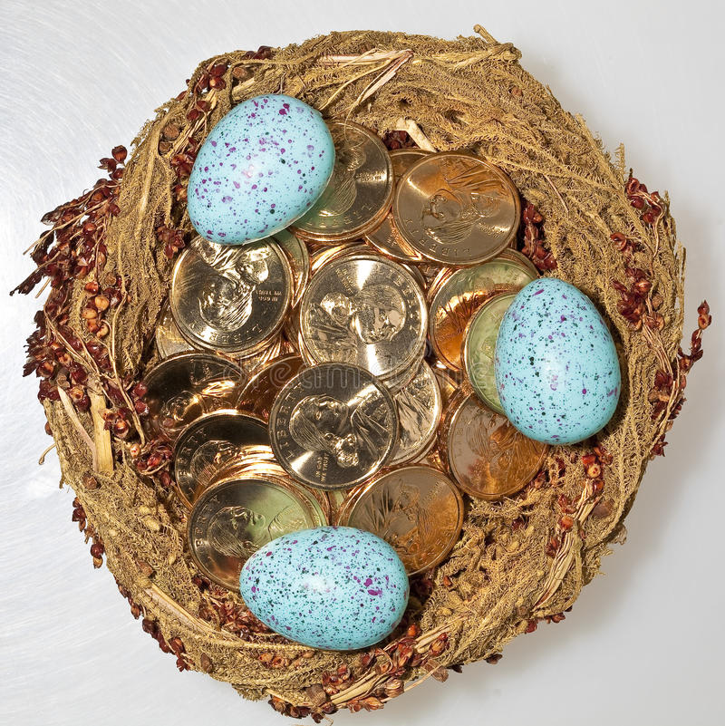 Gold Dollar Coins In Bird S Nest With Eggs Stock Photography