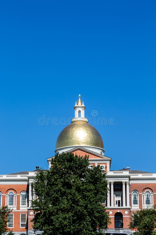 Gold Dome in Boston Beyond Tree royalty free stock photos
