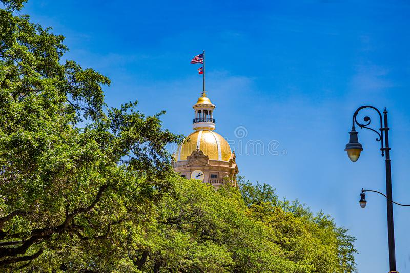 Gold Dome Past Trees royalty free stock photo