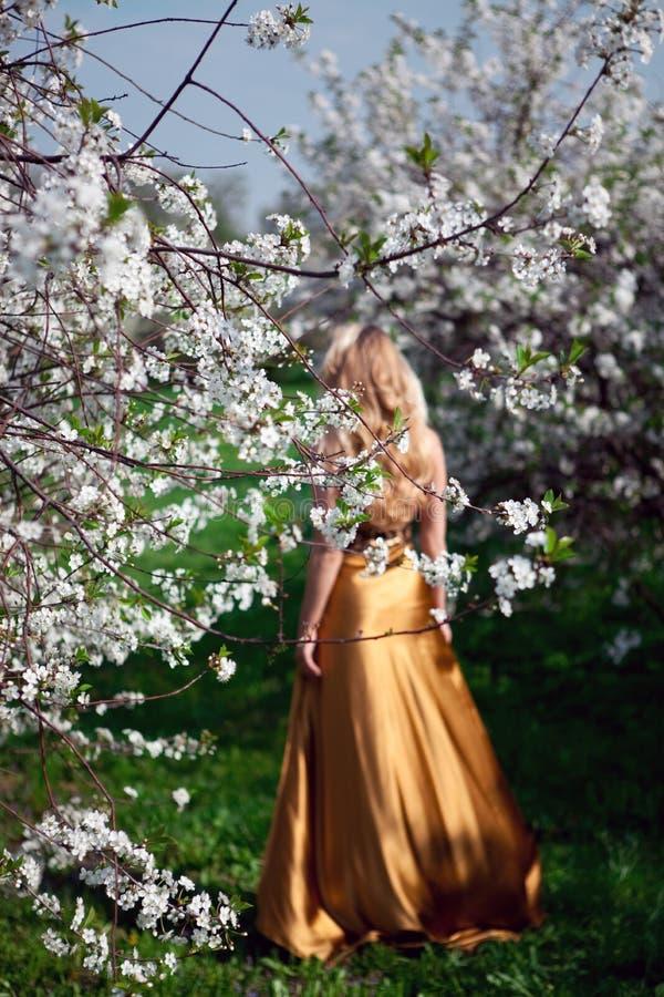 Gold dress stock image