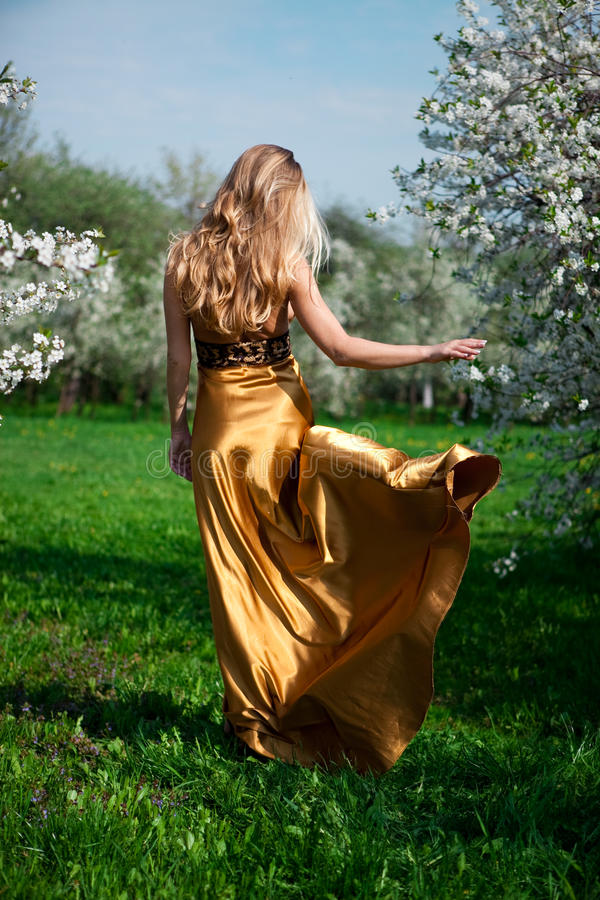 Gold dress royalty free stock photo