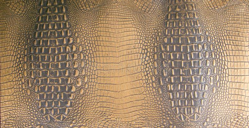 Gold/dunkelbraune prägeartige Alligatorleder-Beschaffenheit lizenzfreie stockfotos