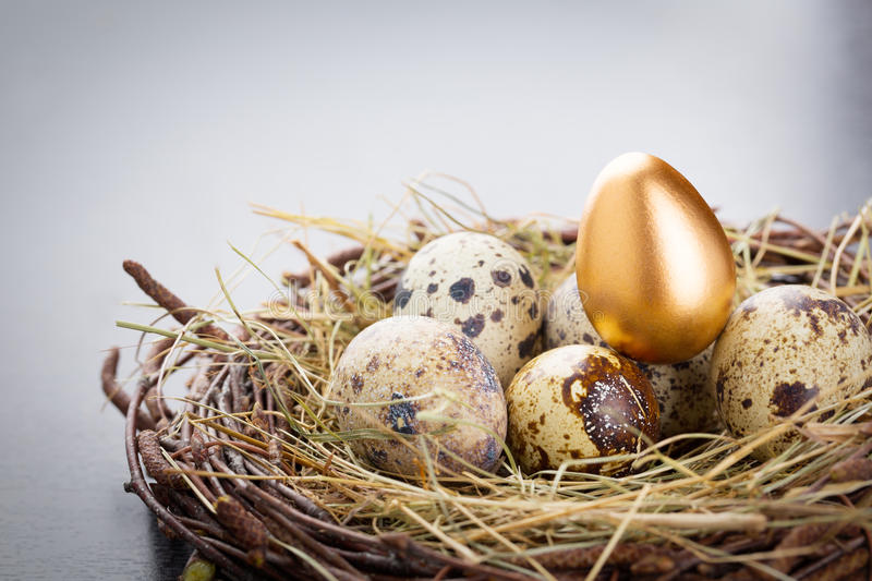 Download Gold Egg stock image. Image of retirement, copy, color - 39500655