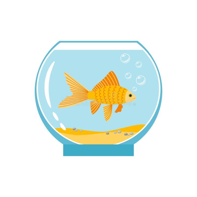 Gold fish in small bowl isolated on white background. Orange goldfish in water aquarium vector illustration. Gold fish underwater in aquarium stock illustration