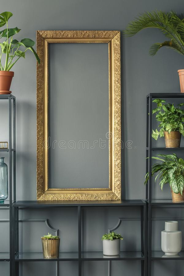 A gold frame and plants in vases on black shelves next to a grey stock photos