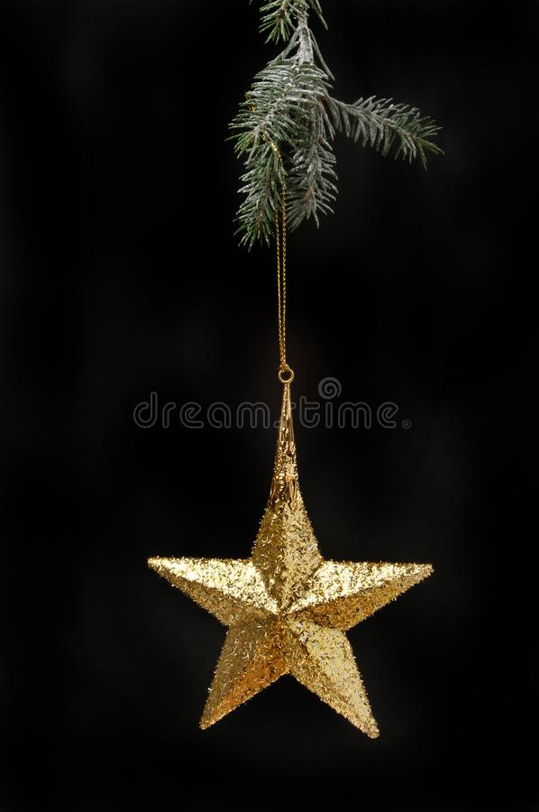 Download Star decoration in a tree stock photo. Image of christmas - 105387430