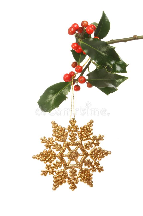 Download Christmas Decoration And Holly Stock Image - Image of foliage, ornament: 105387403