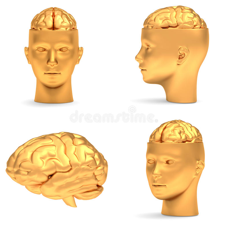 Download Gold head in projections stock illustration. Illustration of genius - 26124625