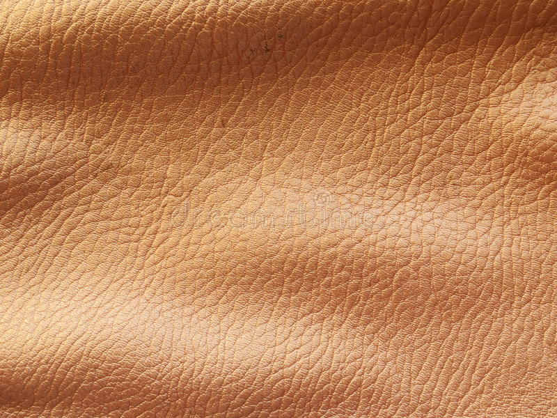Download Gold Leather Background