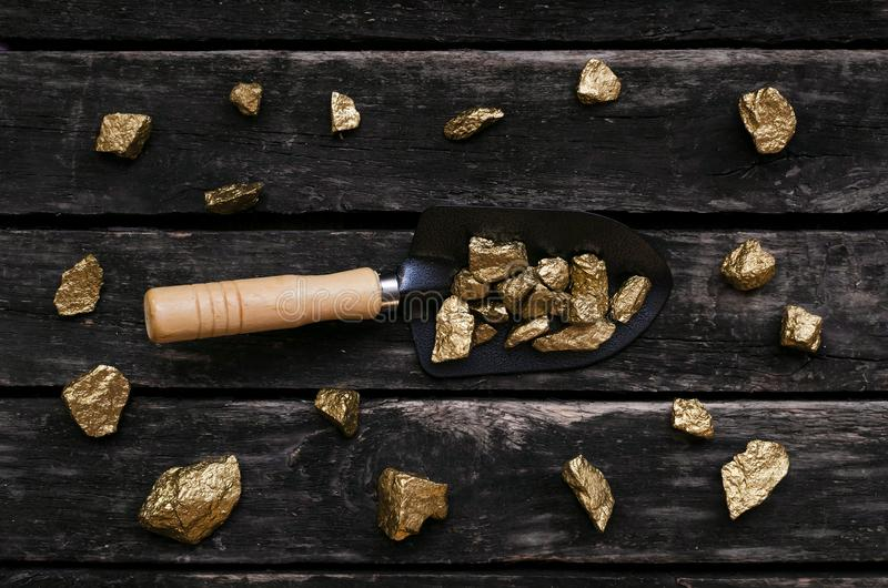 Gold mine. Gold miner. Golden ore in a shovel. Gold ore nuggets in shovel on old adventurer table. Goldminer Treasure hunter concept royalty free stock photos
