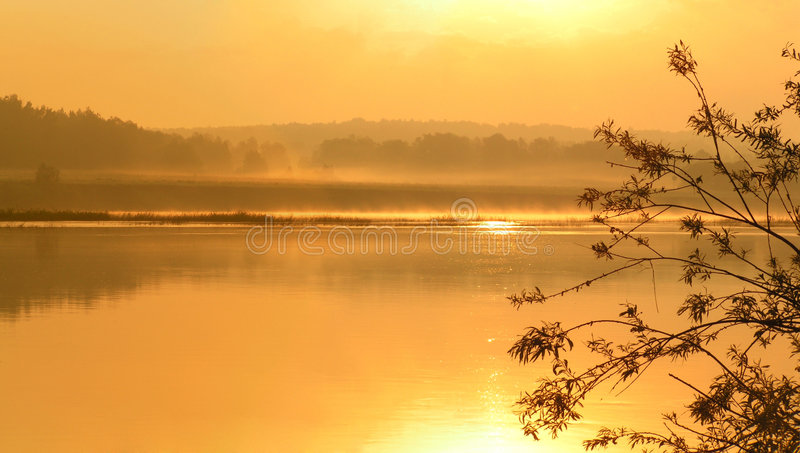 Gold morning on the river. royalty free stock photo