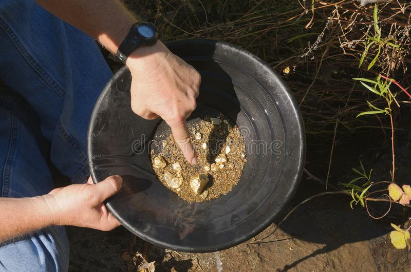 Gold panning, pointing to a nugget stock image