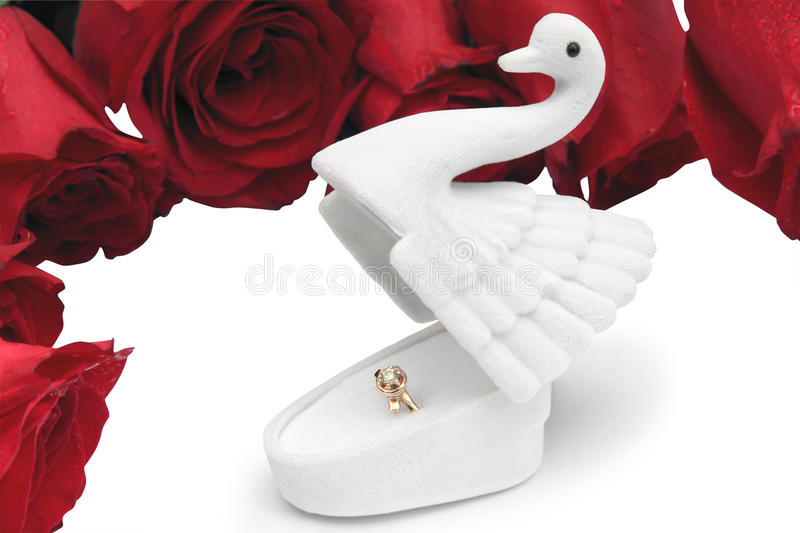 Gold ring in a box in the form of a swan on roses in dewdrops stock image