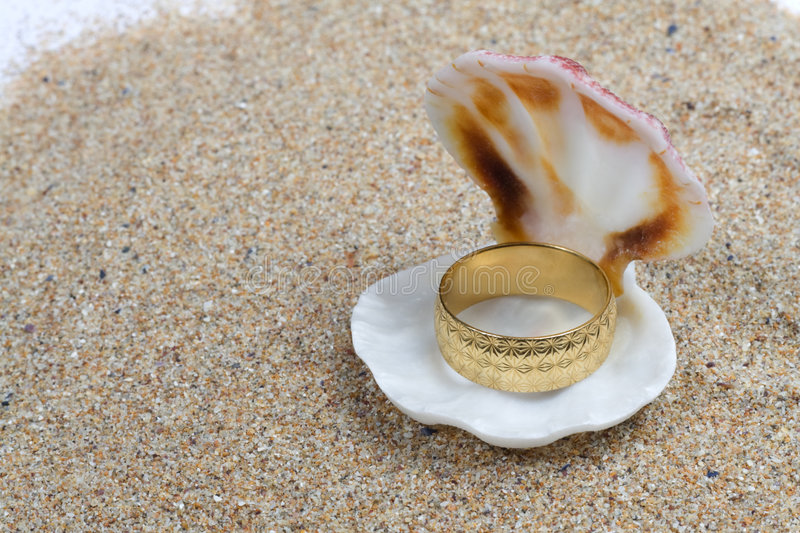 Gold ring in a seashell stock image