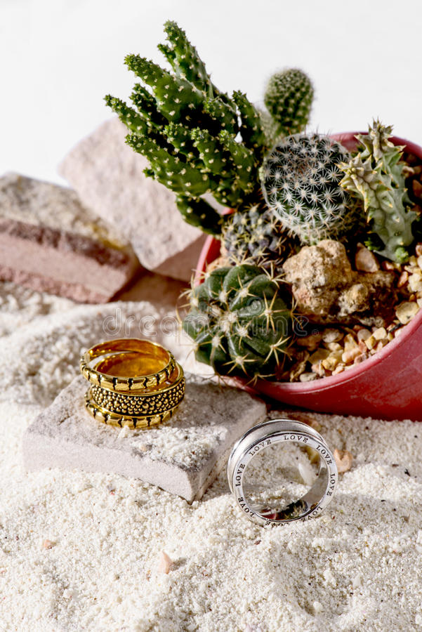 Gold ring and Silver ring in the desert. stock image