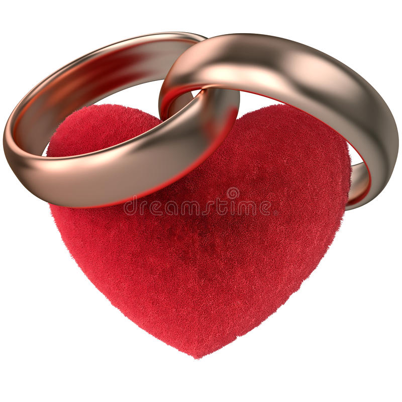 Gold rings and fur heart vector illustration