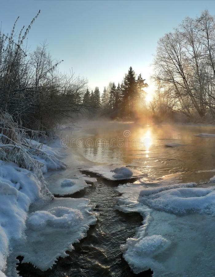 The gold river 2 stock photography
