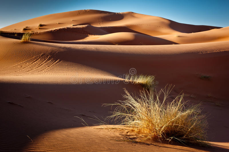 Gold Sand And Blue Sky Stock Photography
