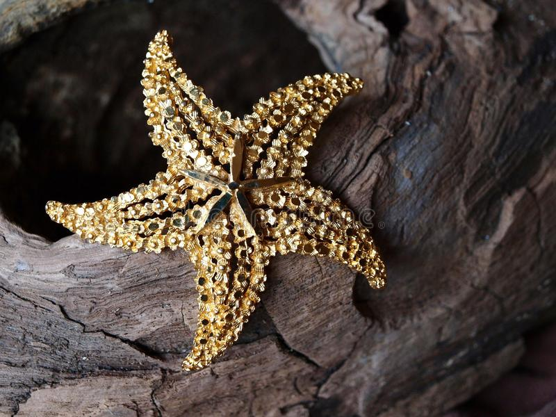Gold Starfish stock photo
