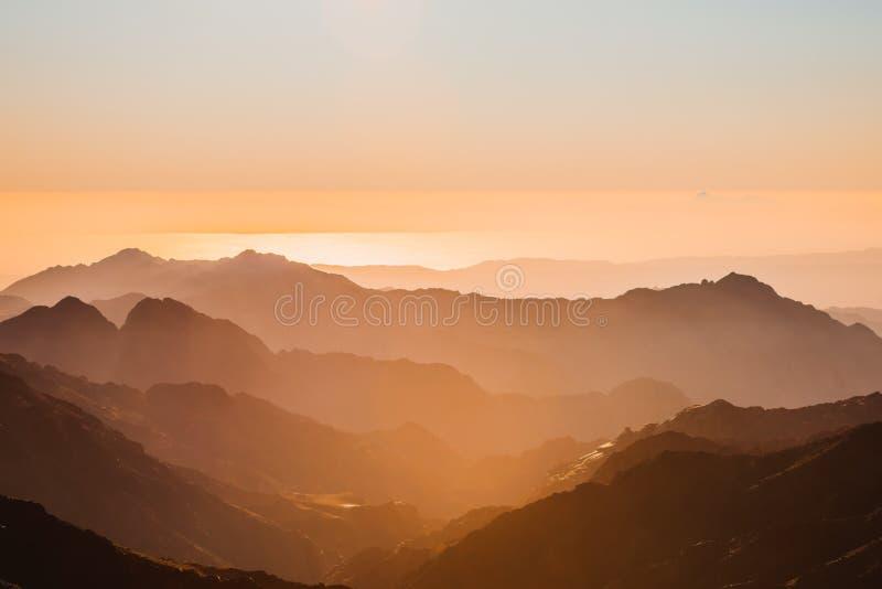 Gold sunset arid desert landscape Sinai, Egypt stock image