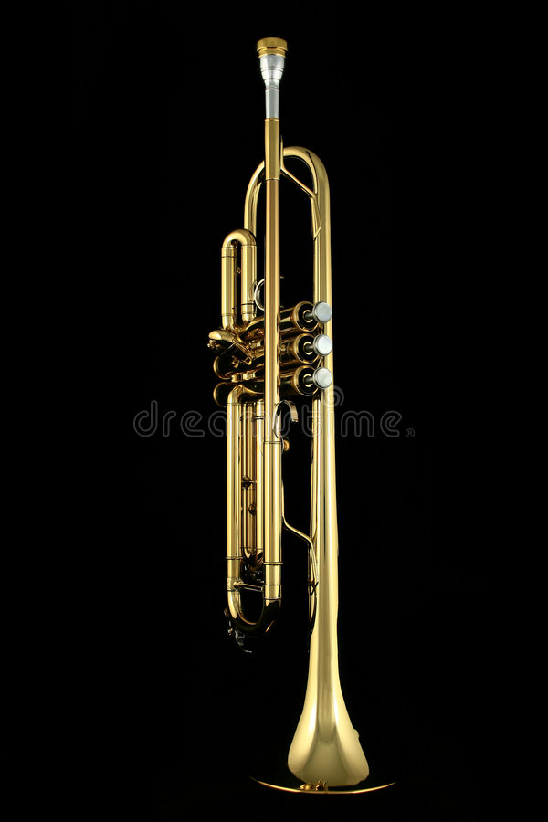 Free Gold Trumpet Stock Photography - 4242352