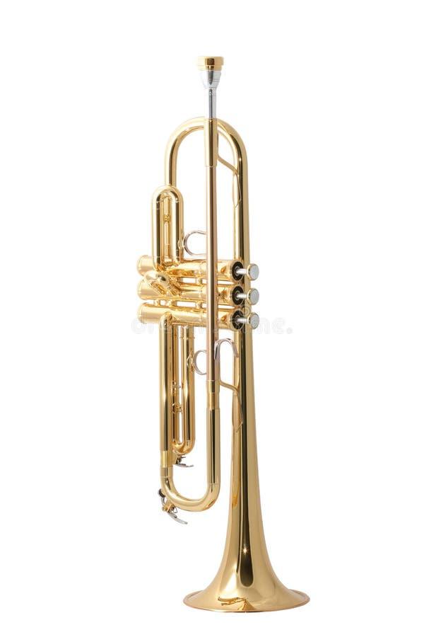 Free Gold Trumpet Royalty Free Stock Photo - 7826965