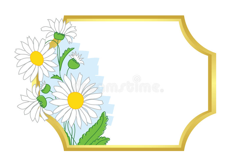 Download Gold Vector Frame With White Chamomile Stock Vector - Image: 25968400
