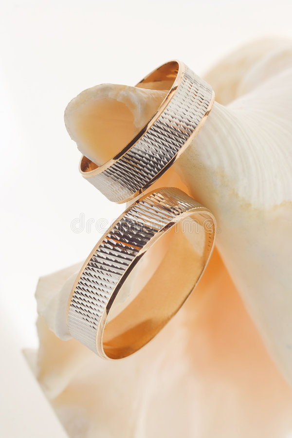 Two gold wedding rings on a sea shell royalty free stock photography