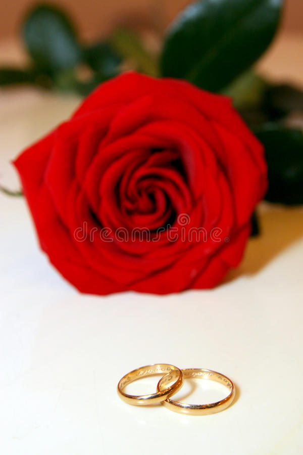 Download Gold wedding rings stock image. Image of jewelry, pair - 28659047