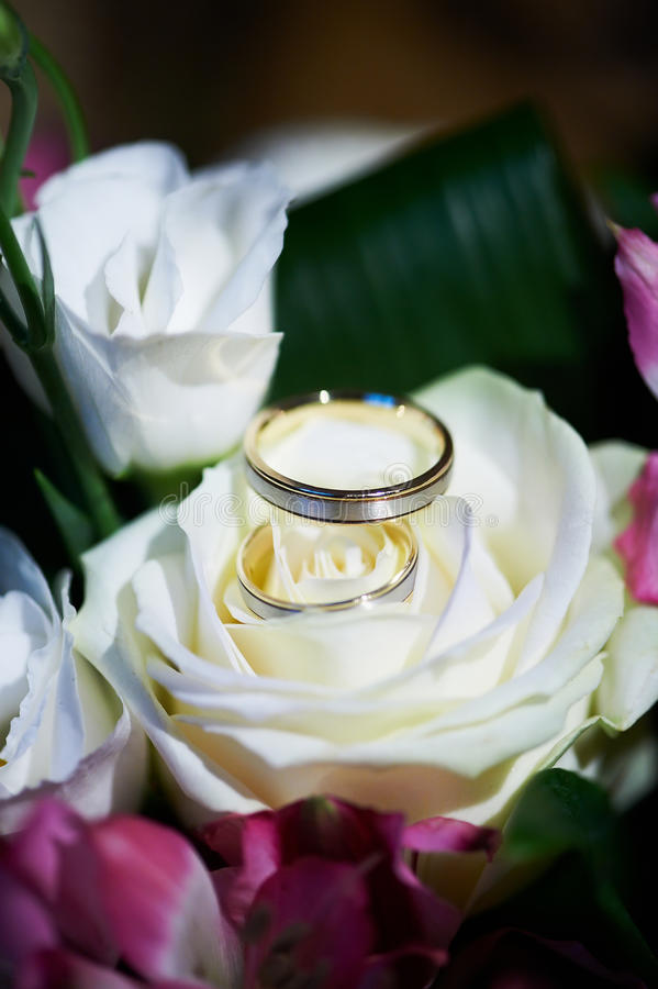 Gold Wedding Rings On The Flower Rose Stock Photography