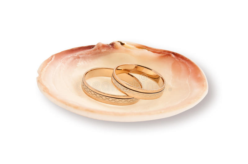 Gold wedding rings in a sea shell royalty free stock image