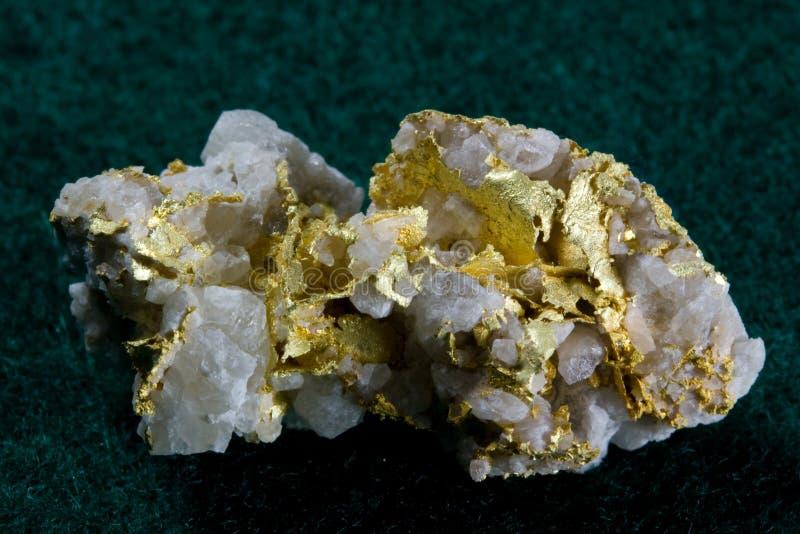 Gold in White Quartz Specimen. From Leadville, Colorado stock images