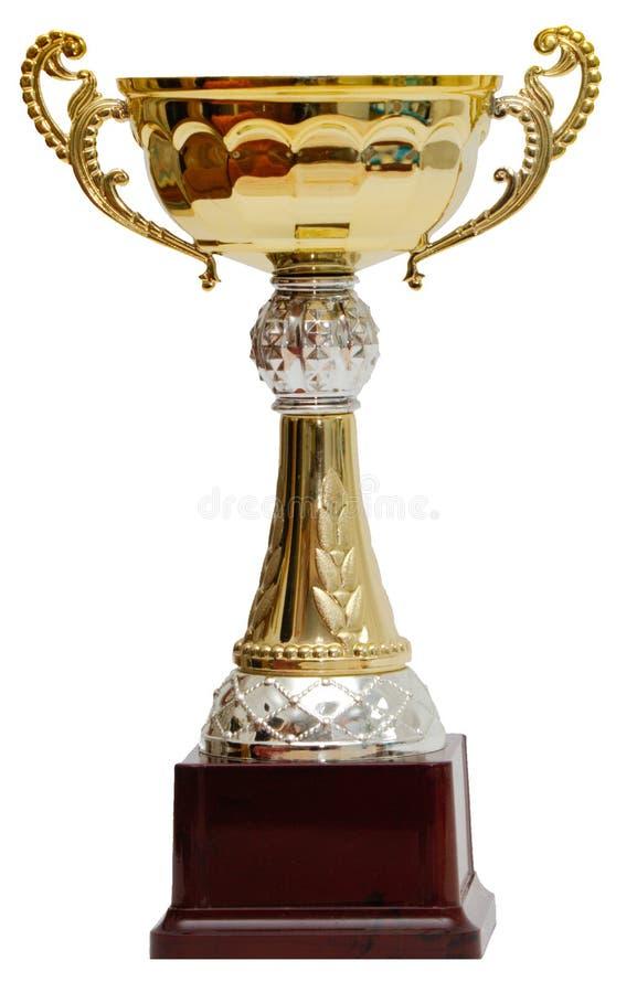 Goldcup lizenzfreies stockbild