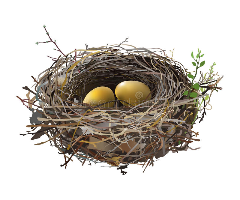 Goldeier in Vogel ` s Nest stock abbildung