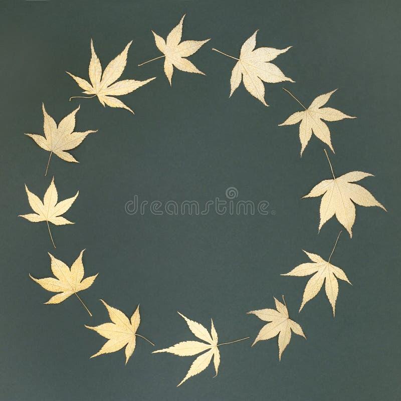 Golden Acer Leaf Wreath. Golden Japanese acer leaf wreath on mottled bottle green background with copy space royalty free stock photos