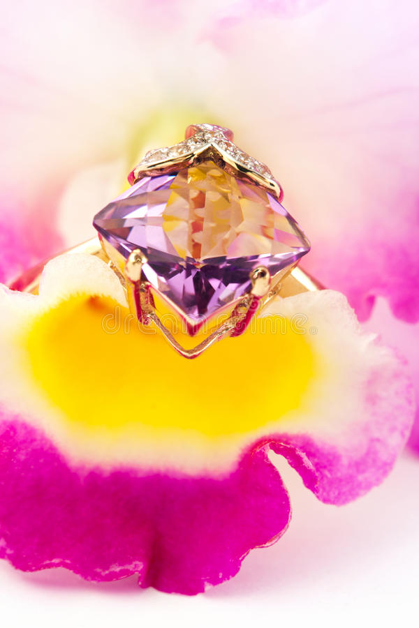 Amethyst ring on flower orchid royalty free stock photo
