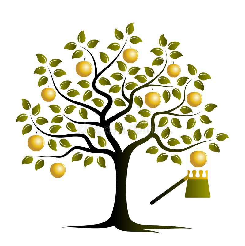 Golden apple tree royalty free stock photography