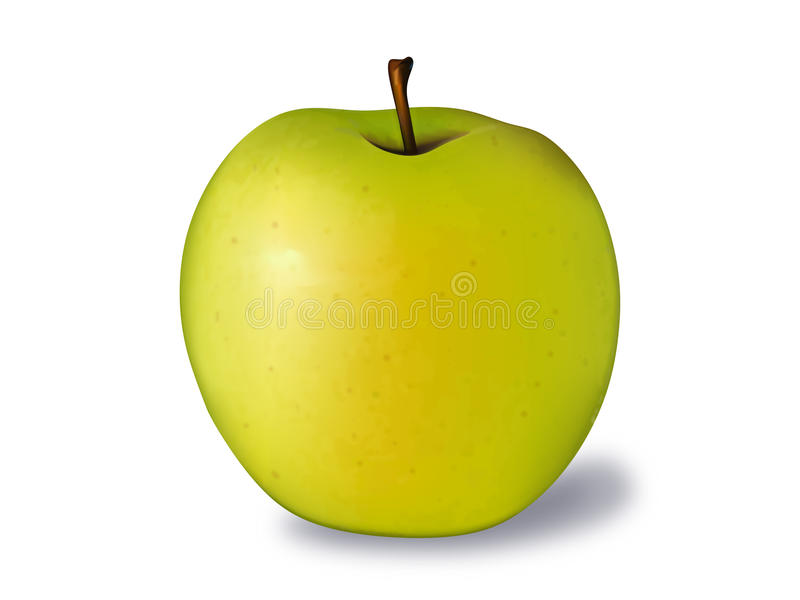 Golden Apple Vector Illustration Stock Photos