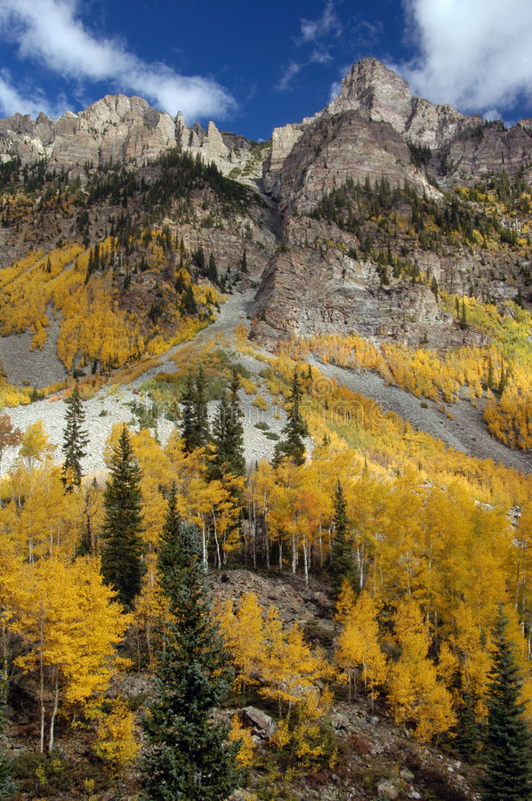 Free Golden Aspens Stock Photos - 383693