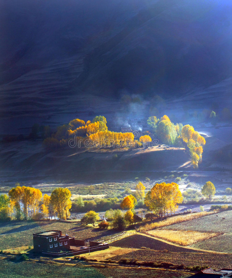 Free Golden Autumn Stock Image - 6359711