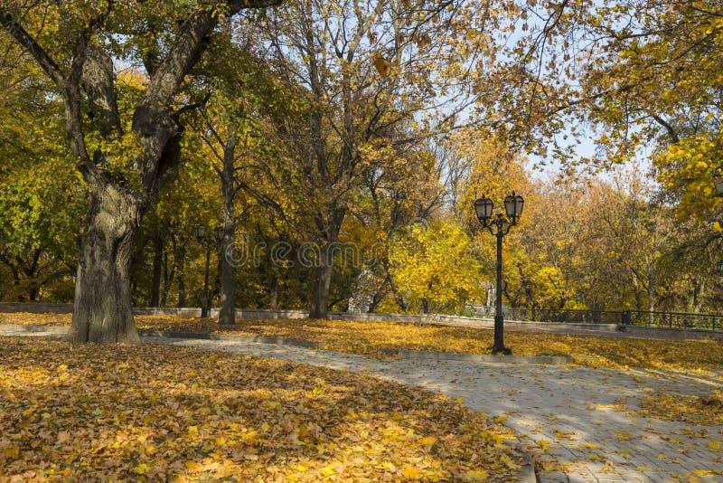 Golden autumn in the city park. City Chernihiv. Ukraine stock photos