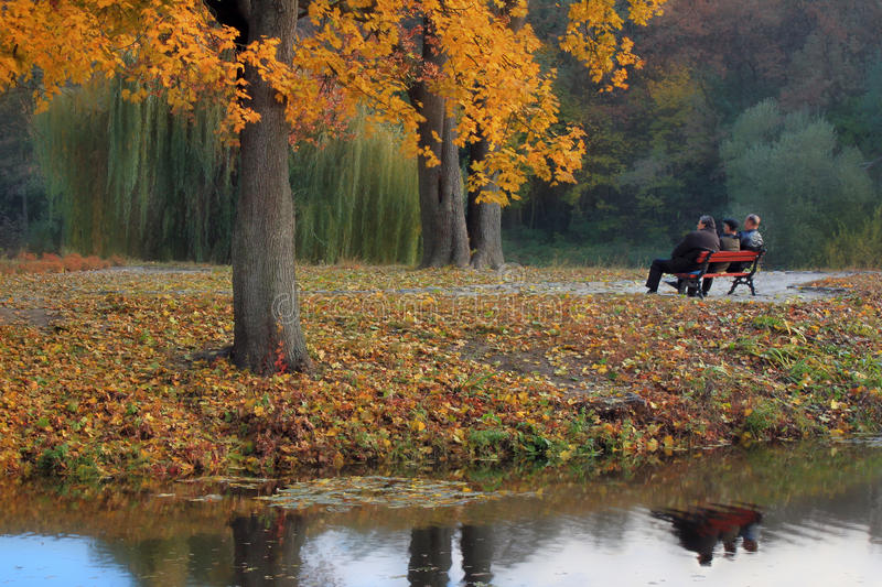 Download Golden Autumn elderly stock photo. Image of leaves, people - 17082950