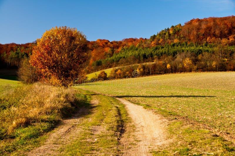 Golden Autumn in German countryside stock photos