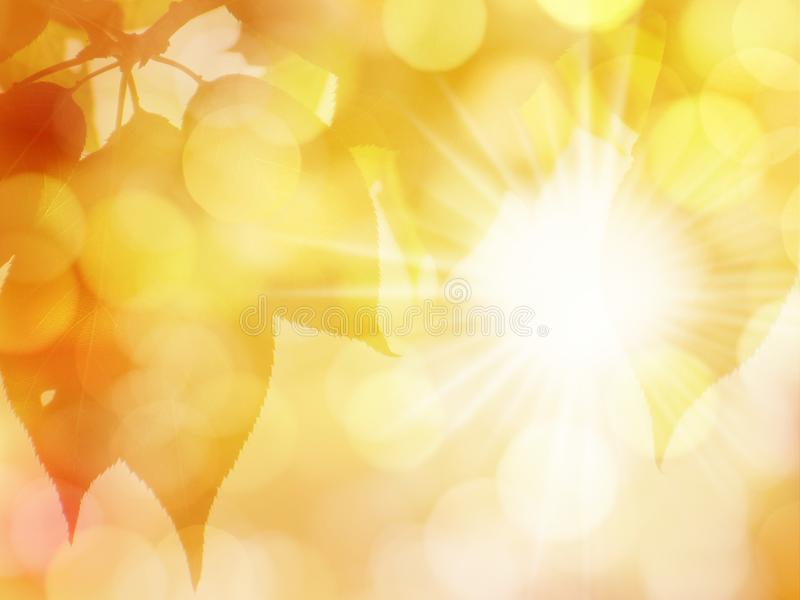 Golden Autumn Leaves on Bokeh Background with Sun royalty free stock photography