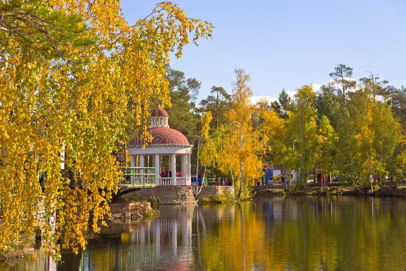 Golden autumn in the Park of culture and rest.Birch in the foreground. Ural,Chelyabinsk stock photo