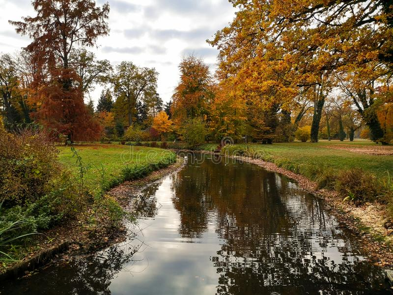 Golden autumn park landscape in Potsdam, Germany stock photography