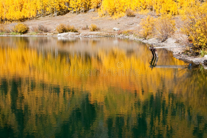 Golden Autumn Reflections royalty free stock images